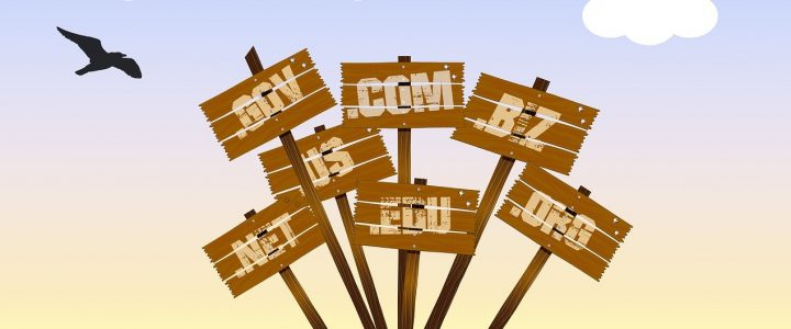 A Guide To The Importance Of Domain Names For Life Coaches