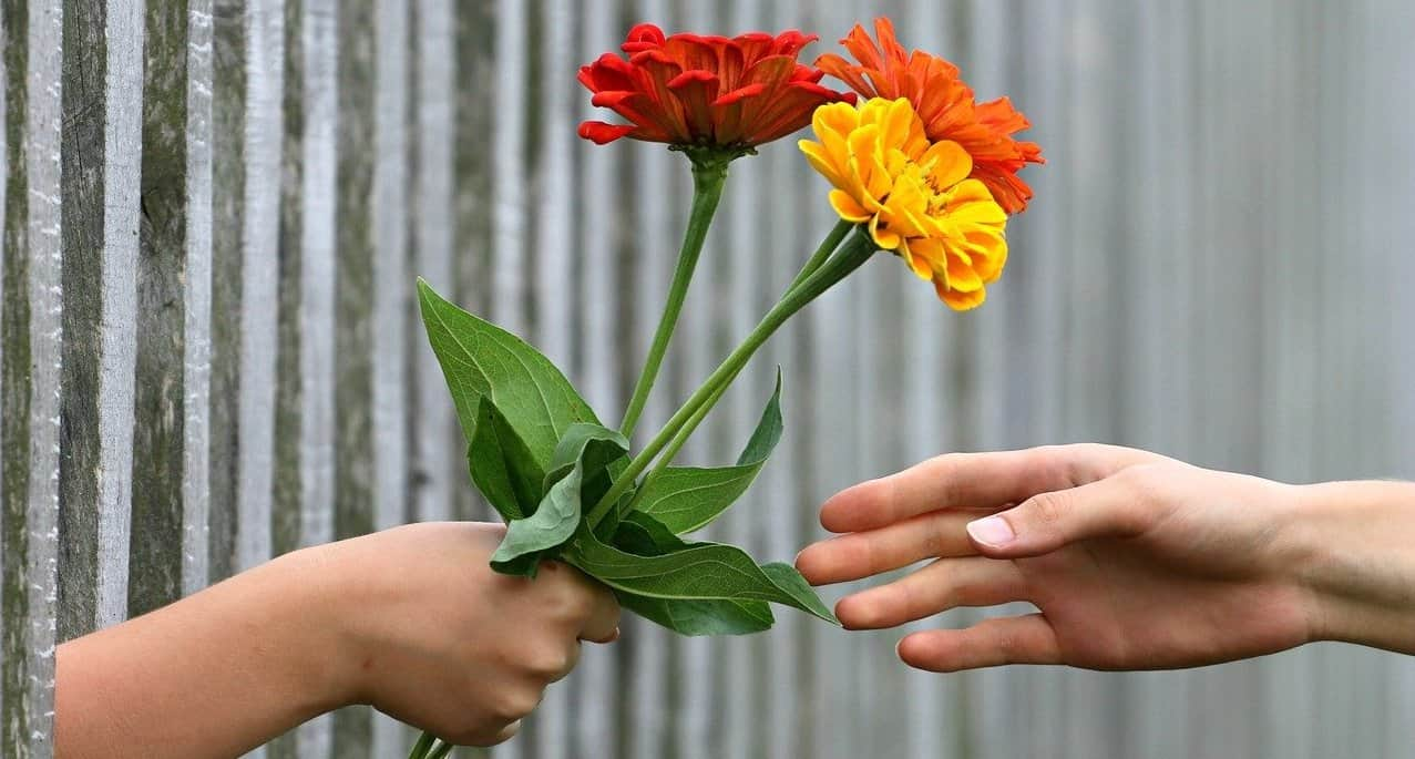 handing colorful flowers